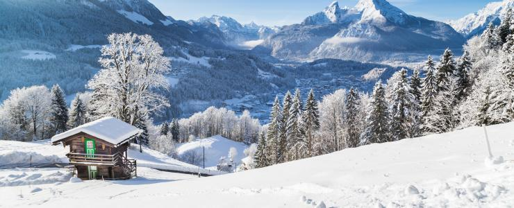 La région forestière des Alpes
