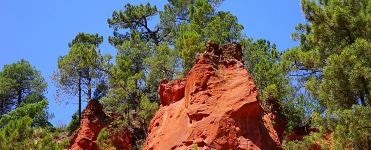 84 Vaucluse - Des forêts liées à l'activité de l'homme